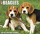 Willow Creek Press: Just Beagles 2020 Box Calendar (Dog Bree