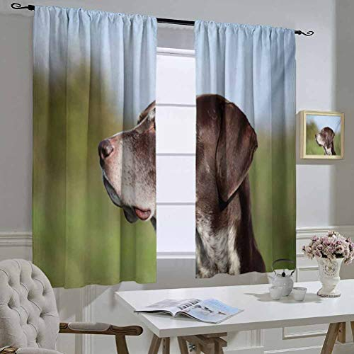 Mozenou Hunting Best Home Fashion Thermal Insulated Blackout Curtains German Short Haired Pointer in Wilderness Portrait Photograph Kurzhaar Pet Dog Curtain Door Panel 55x72 Inch Multicolor