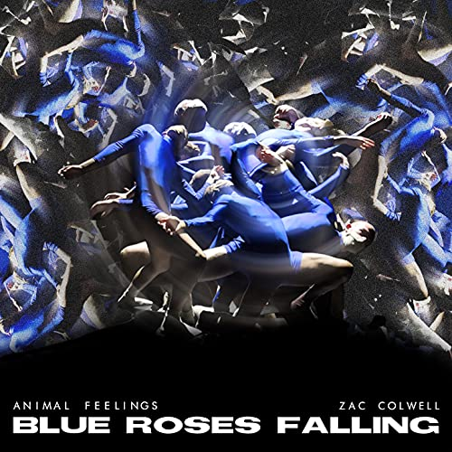 Blue Roses Falling