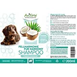 Aniforte Fellharmonie Shampoo mit Kokosöl-Extrakt & Aloe Vera 200ml Hundeshampoo Kokos-Shampoo – Naturprodukt für Hunde - 3