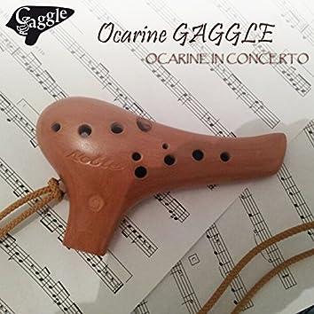Ocarine in concerto