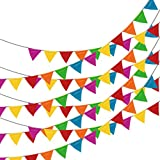 250pcs Multicolor Pennant Flags,LOOBJOYGAME 263Ft...