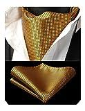 Enlision Men's Cravats Polka Dot Check Ascot Handkerchief Wedding Classic Business Cravat Tie Set Gold