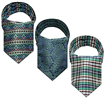 HISDERN Floral Paisley Stripe Cravat Ascot Tie for Men Wedding Party Cravat Scarf 3-Pack Combo Green