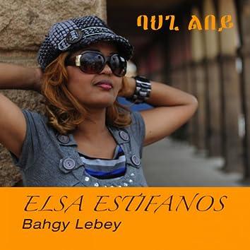 Bahgy Lebey
