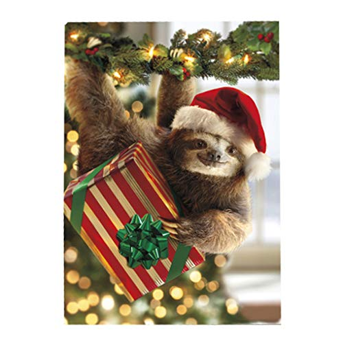Avanti Christmas Cards with Envelopes, Sloth Bearing Gifts, Pack of 10