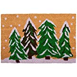 Calloway Mills Winter Wonderland Doormat, Multicolor