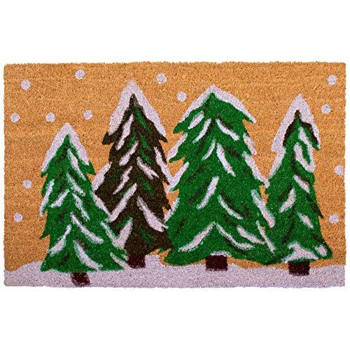 """Calloway Mills 122252436 Winter Wonderland Doormat, 24"""" x 36"""", Multicolor"""