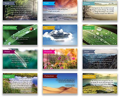 Logos Trading Post Pass Along Scripture Card Variety Pack 12 Hand Picked Desings 5 Of Each Design Pack Of 60 Assortment 6