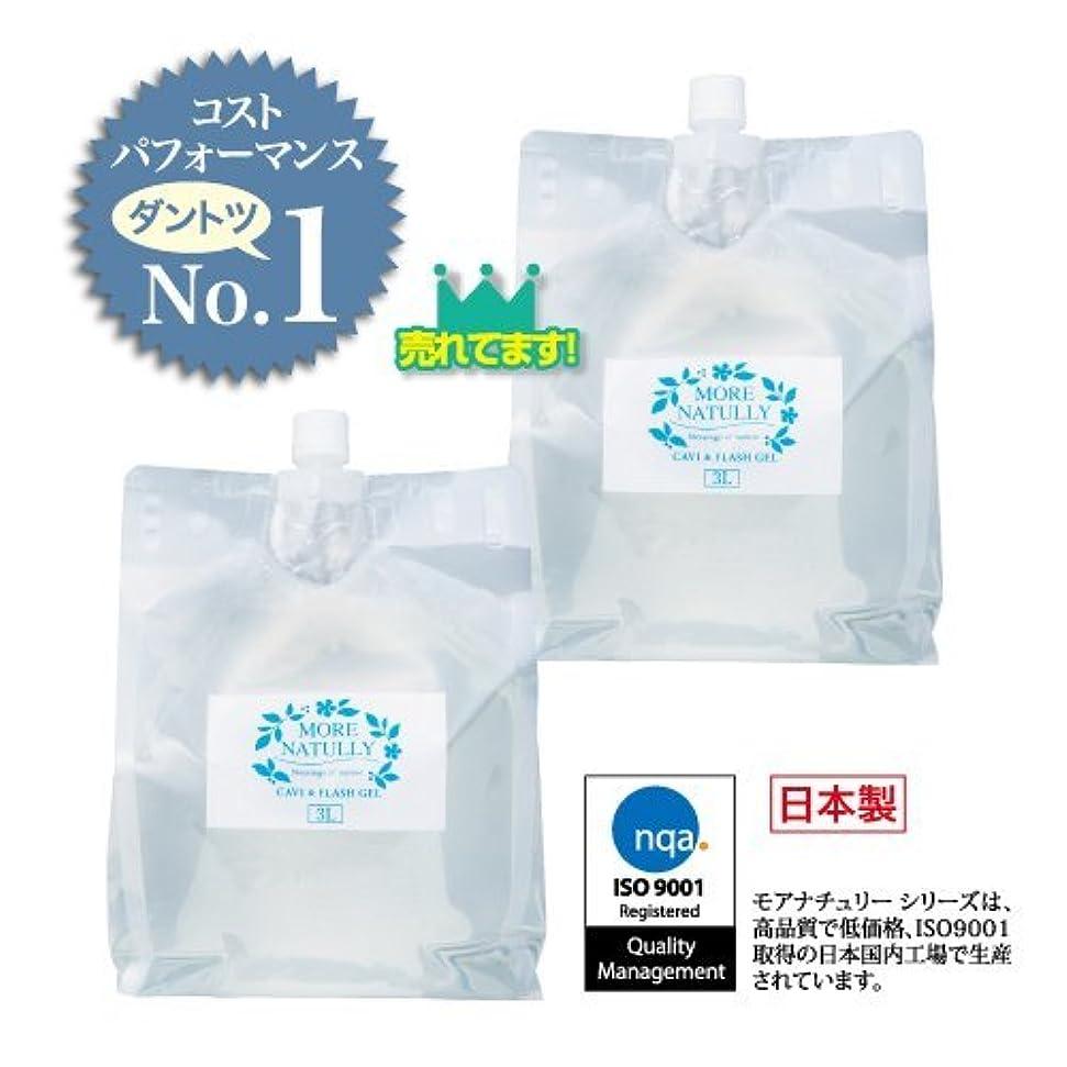 座る不機嫌多様なモアナチュリー キャビ&フラッシュジェル 【ソフト】3kg×2袋