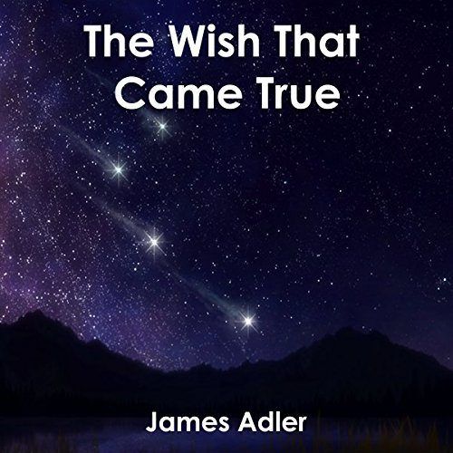 The Wish That Came True audiobook cover art