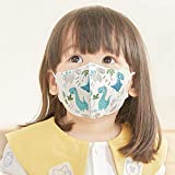 GREENNOSE 使い捨て VFE・PEF・花粉99%以上高性能フィルター使用 ベビー立体マスク(三層式) 王子 5枚入り 1~3歳 (15)