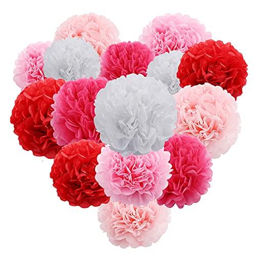ACTTGGJ 14 Pompones de Papel de Seda Para Colgar en Papel de Flores, Bolas de Pompones para Fiestas, Bodas, Cumpleaños, Navidad, Festivales, Decoración de Habitaciones, Suministros de Fiesta,Rosa