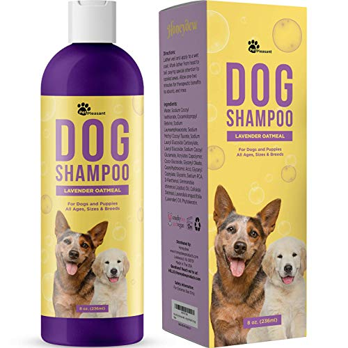 Natural Dog Shampoo for Smelly Dogs - Refreshing Colloidal Oatmeal Dog Shampoo for Dry Skin and Cleansing Dog Bath Soap - Moisturizing Dog Shampoo Oatmeal Lavender Formula for Great Smelling Dog Wash