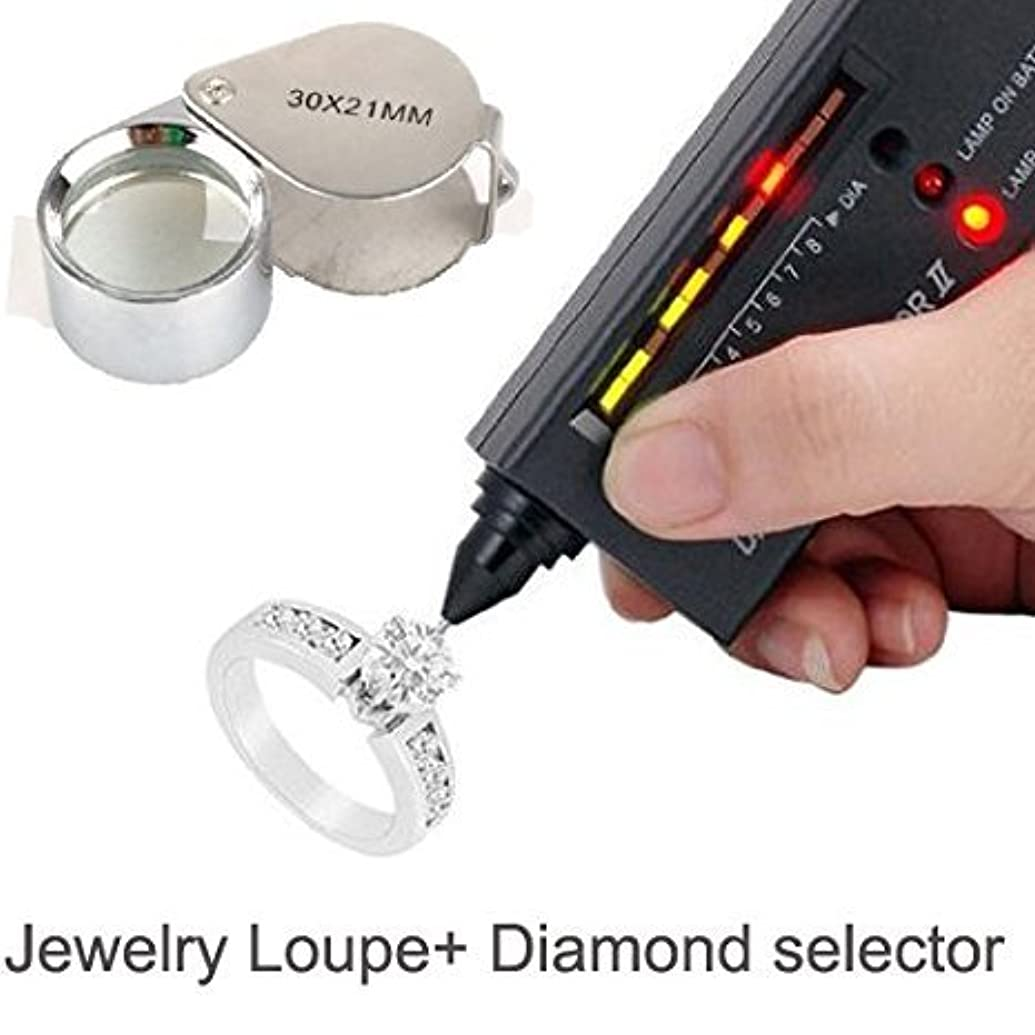 LuckyStone Jeweler Tool Kit Jewelry Diamond Selector II Portable Tester LED Plus 30X Jewelry Loupe
