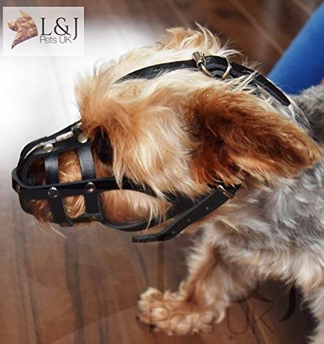 Muselière en cuir léger pour chihuahua, Yorkshire Terrier et autres (00, marron)