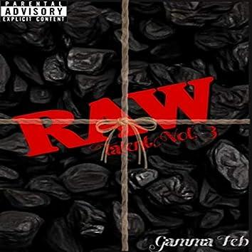 Raw Talent, Vol. 3
