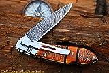 DKC Knives DKC-58-LJ-EH-DS-PC Little Jay Chief Pocket Clip Damascus Steel Folding Pocket Knife...