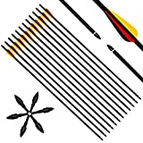 Narchery Tiro con L'Arco Frecce, 31' Pollici Arcos di Caccia ad Frecce per Ricurvo e Compound Arco, Include frecce di Ricambio, Tre Palette di plastica, realizzate in Carbonio Misto, 3 Multi, 12 PCS