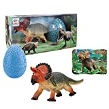 Monoclonius 8.27   Dinosaur Toy Playset for Boys and Girls Realistic Roaring Dinosaur Educational Puzzle and Colorful Dinosaur Egg for Birthday Gift, Play, Education, Collection, Decoration