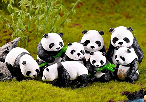 BoomTeck Miniature Garden Ornaments 8 Pcs Cute Mini Animal Pandas Cactus Fairy Garden Accessories DIY Kits for Bonsai Craft  Cactus Garden Micro Landscape Dollhouse Indoor Outdoor Home Decor