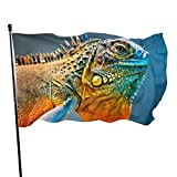 Bandnae 3x5 FT Polyester Flag Colorful Iguana Durable and Fade Resistant Home Garden Indoor Outdoor Flags