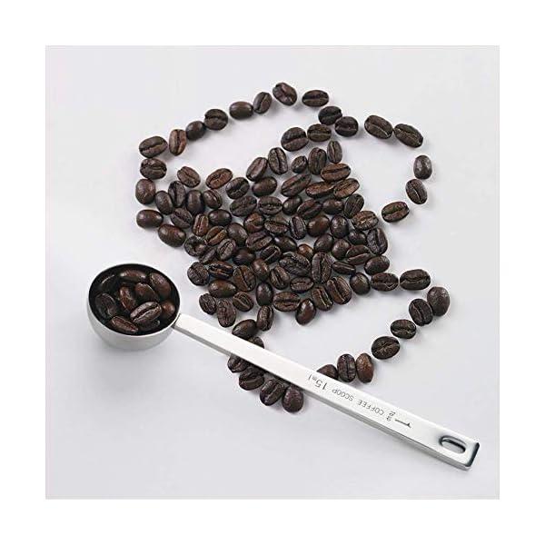 IZELOKAY 401 Coffee Scoop, Stainless Steel 1 Table Spoon