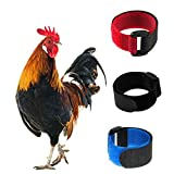 Minelife 3 Pack No Crow Rooster Collar,...