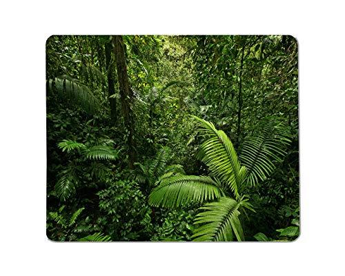 Yeuss Natural Landscape Plant Rectangular Non-Slip Mousepad,Tropical Rainforest Palm Trees Dense Leaves Gaming Mouse Pads,200mm x 240mm
