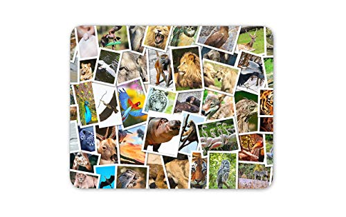 Mouse Pad Awesome Animal Polaroid Mouse Mat Pad - Natural World Zoo Mouse Pad Pack Gift