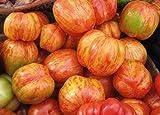 David's Garden Seeds...image
