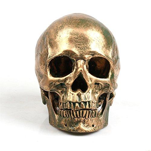 ECYC 1:1 Harz Menschlicher Schädel Modell Halloween Requisiten Hauptdekorationen, Fidelity Medical Modell Schädelkopf für Art Medica Teaching, Bronze