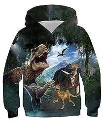2. Belovecol Boys Printed Dinosaur Pullover Hoodie