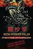 Iron Power Palm: 97 days to skull smashing power