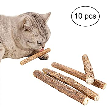 FineInno 10 Pièce Matatabi Bâtons Mâcher Chat Catnip Sticks Cat Jouets à l'herbe à Chat Bio Bois Cataire MâChonner Silvervine Menthe Naturel Chat Jouet Dentaire Mâchonner Nettoyage (10 Pièce Bâtons)
