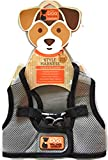 Dog walker company The Reflector Accent Harness | Medium | Gray/Black