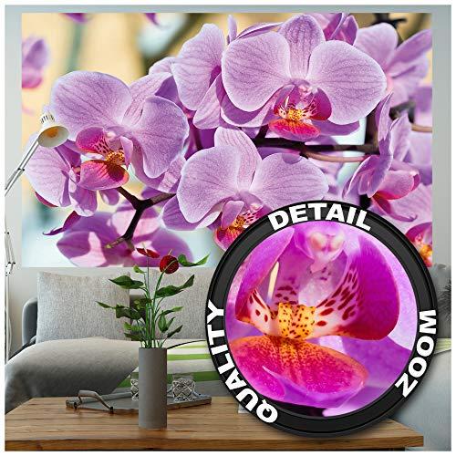 GREAT ART® Fototapete – Orchidee Lila – Wandbild Dekoration Blumen Wellness Spa Blüten Natur Phalaenopsis Knabenkraut Orchid Blütenzweig Foto-Tapete Wandtapete Fotoposter (210 x 140 cm)
