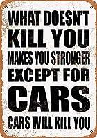 車を除く 金属板ブリキ看板警告サイン注意サイン表示パネル情報サイン金属安全サイン