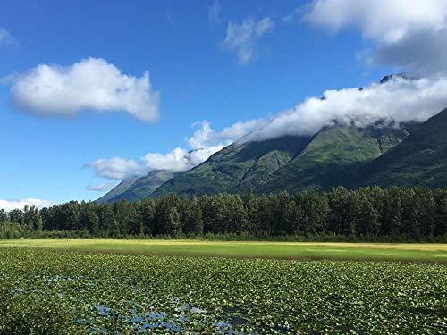 Puzzle Puzzles 1000 Teile Erstaunliche Ansicht des Landschaftsberges In Alaska DIY Art Für Erwachsene Erwachsene