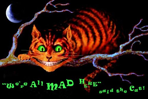 Studio B We are All Mad Here Poster