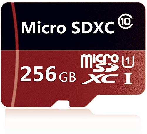 Best 256gb micro sd card