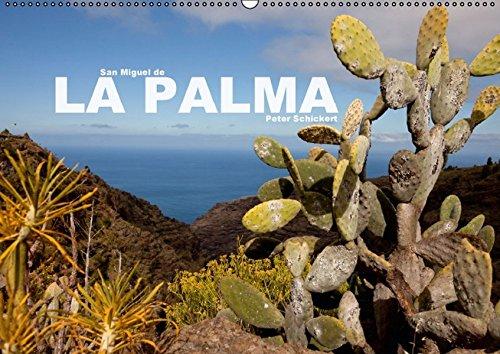 San Miguel de la Palma (Wandkalender 2016 DIN A2 quer): Ein Kalender mit 13 eindrucksvollen Reisefotos von einer der landschaftlich schönsten Inseln ... (Monatskalender, 14 Seiten ) (CALVENDO Orte)