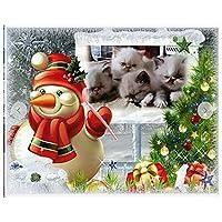 家の壁の装飾のための5Dダイヤモンド塗装キットフルドリルツール付き5Dダイヤモンドアートアクセサリー家族や自己使用のための理想的なギフト、クリスマス雪だるま猫-40X50Cm