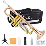 ROWELL Trumpet Bass Standard Bb Trumpet Set for Student Beginner and Professional with Deluxe Hand Case,Gloves,7C Mouthpiece and Trumpet Clean Kit (Antique Finished)