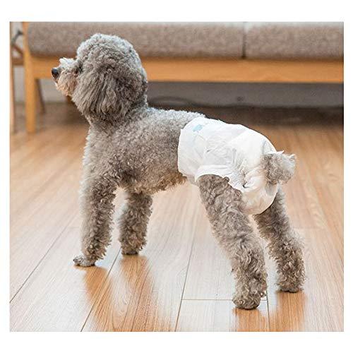 GDDYQ Hond hygiëne broek, wegwerp teef luiers comfortabel en ademend, een verscheidenheid aan maten kan kiezen