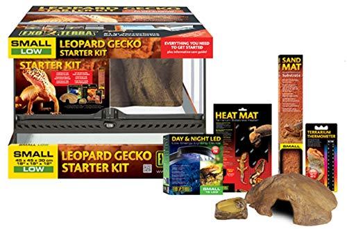 Exo TerraKit de Incio para Gecko