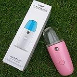 WHJR Humidimètre Humidificateur Usb Nano Spray Vapeur Visage Appareil De Poche Visage Froid Spray Beauté Instrument Rose 001