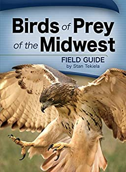 Birds of Prey of the Midwest Field Guide  Bird Identification Guides