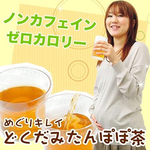 ティーライフノンカフェインどくだみたんぽぽ茶ポット用30個入