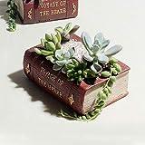 L-sister Tamaño: 14 x 10,5 x 5 cm, libros de literatura retro, macetas, bonsái, micropaisaje, vintage, para flores, suculentas, cactus y hierbas, caja de cama
